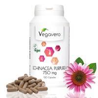 ECHINACEA Vegavero |120 Capsule da 750 mg con 4% di polifenoli | ESTRATTO TITOLATO, non polvere | SENZA MAGNESIO STEARATO | Rinforzo Sistema Immunitario - Prevenzione Influenza - Cistite | Vegan, privo di Glutine e Lattosio
