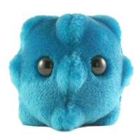 GIANTMICROBES Microbi Giganti Peluche RAFFREDDORE