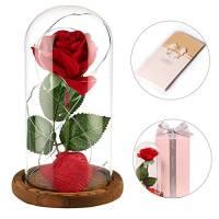 """anaoo rosa di seta artificiale rosso """"La bella e la Bestia"""" in cupola vetro regalo per il giorno di San Valentino compleanno anniversario matrimonio Regalo di Festa della Mamma"""
