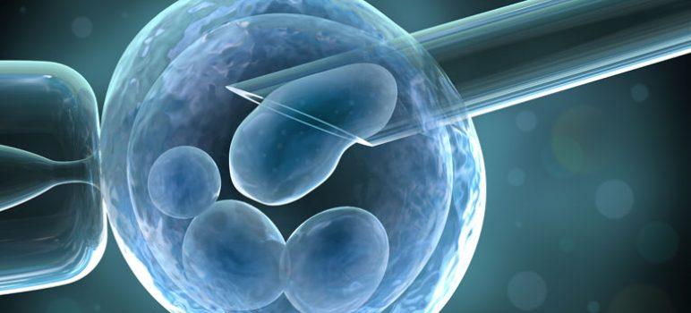 inseminazione artificiale